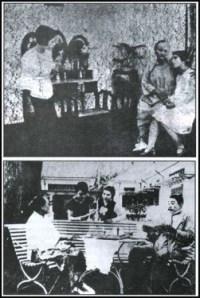 Lily Van Java